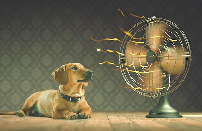 Comment choisir le bon ventilateur pour brasser de l'air utilement